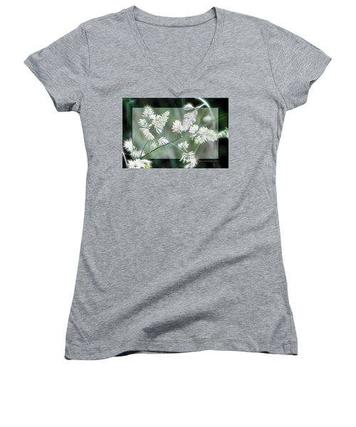 Weeds Women's V-Neck T-Shirt (Junior Cut) by EricaMaxine  Price