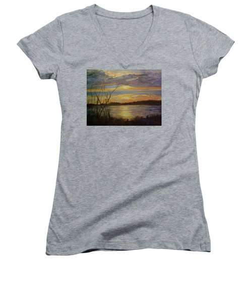 Wetland Women's V-Neck T-Shirt