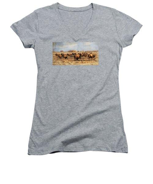 Where The Buffalo Roam Women's V-Neck T-Shirt