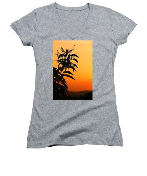 Whipple Hill Women's V-Neck T-Shirt