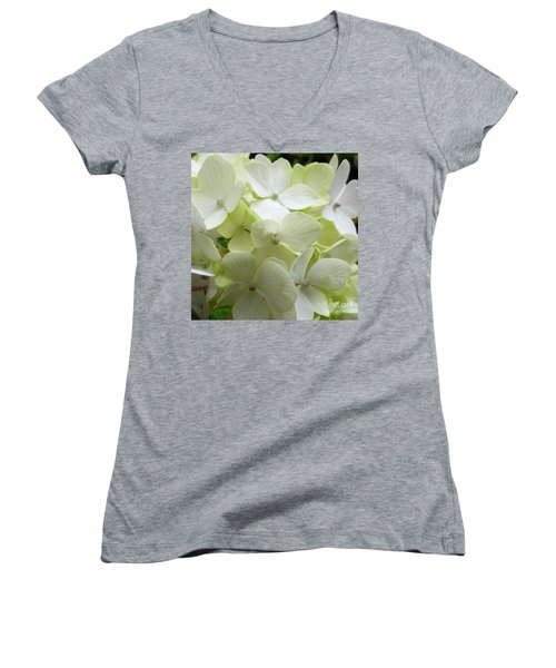 White Hydrangea Women's V-Neck T-Shirt (Junior Cut) by Barbara Moignard