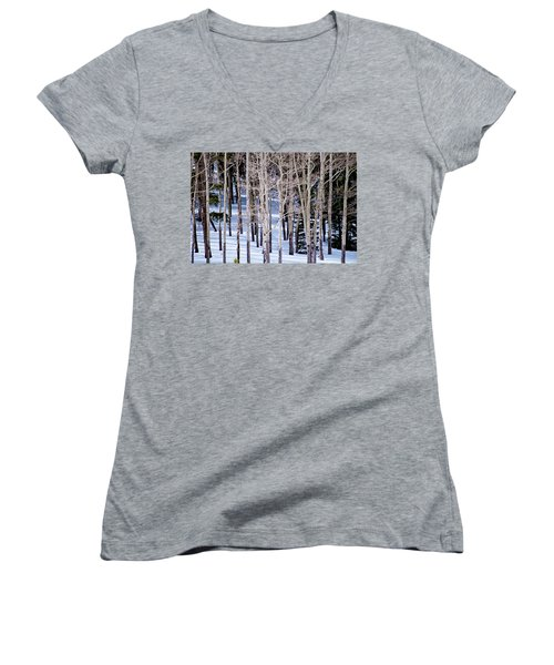 Winter Aspens Women's V-Neck T-Shirt (Junior Cut) by Colleen Coccia