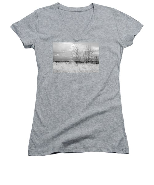 Women's V-Neck T-Shirt (Junior Cut) featuring the photograph Winter Bare by Kathleen Grace