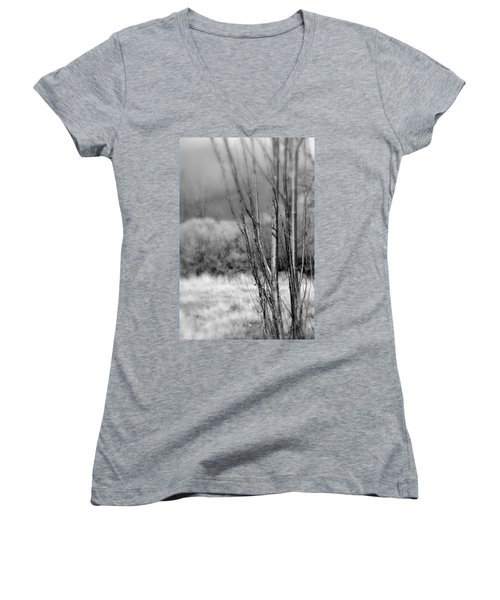 Women's V-Neck T-Shirt (Junior Cut) featuring the photograph Winters Branch by Kathleen Grace