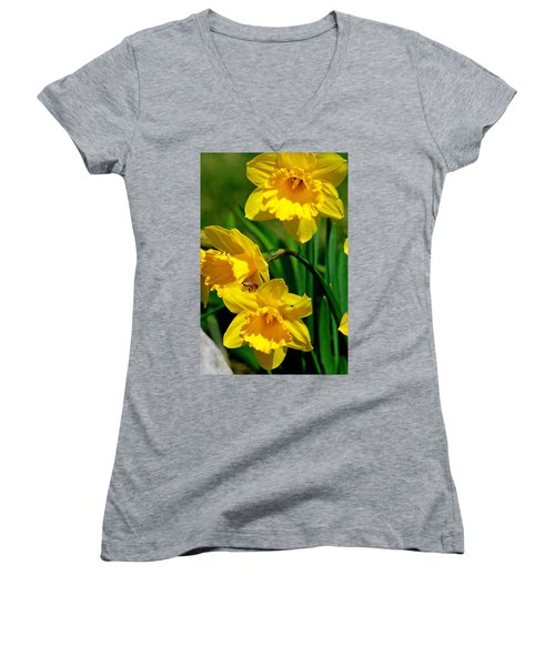 Women's V-Neck T-Shirt (Junior Cut) featuring the photograph Yellow Daffodils And Honeybee by Kay Novy