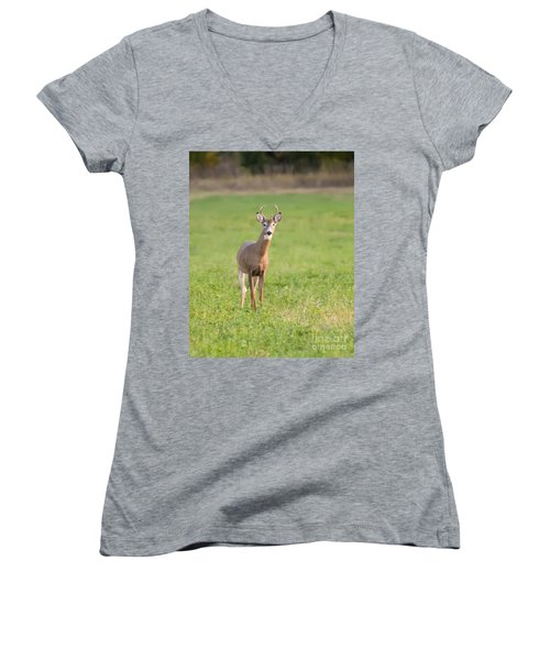 Women's V-Neck T-Shirt (Junior Cut) featuring the photograph Young Buck by Art Whitton
