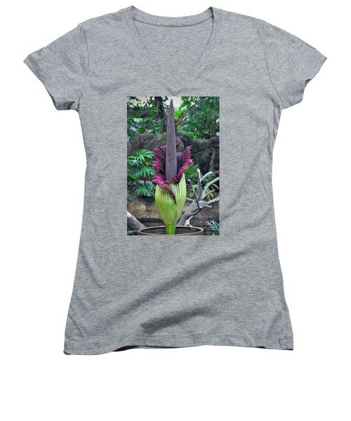 Corpse Flower Women's V-Neck T-Shirt (Junior Cut) by Savannah Gibbs