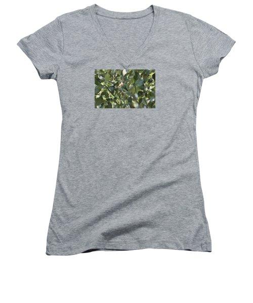Women's V-Neck T-Shirt (Junior Cut) featuring the photograph  Flight Of The Hummingbird by Debra     Vatalaro