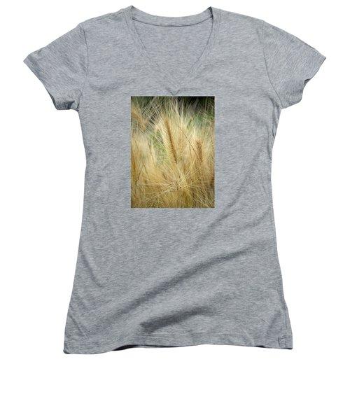 Foxtail Barley Women's V-Neck T-Shirt (Junior Cut) by Jouko Lehto