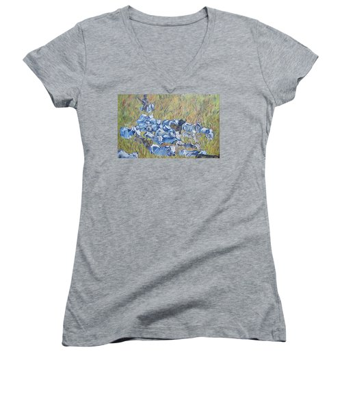 Gaucho Roundup Women's V-Neck T-Shirt
