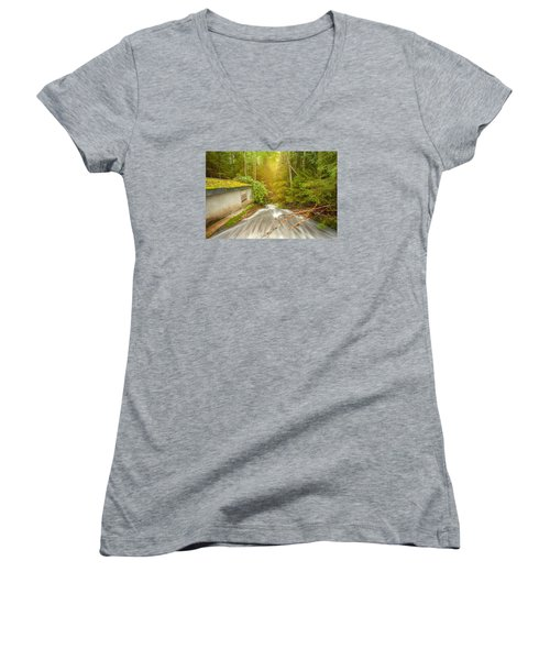 Women's V-Neck T-Shirt (Junior Cut) featuring the photograph  In The Woods by Rose-Maries Pictures
