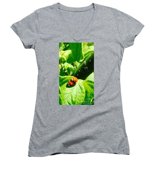Women's V-Neck T-Shirt (Junior Cut) featuring the photograph  Ladybugs In Love - No. 2016 by Joe Finney