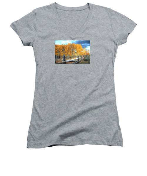 Autumn Fenced Women's V-Neck (Athletic Fit)