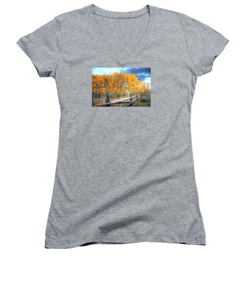 Autumn Fenced Women's V-Neck T-Shirt