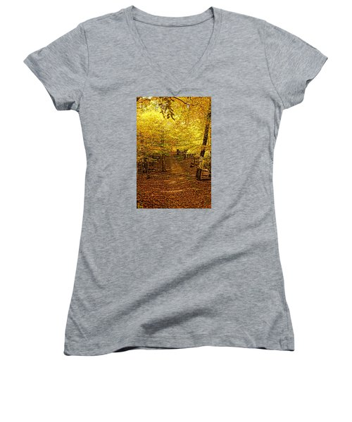 Women's V-Neck T-Shirt (Junior Cut) featuring the photograph A Walk In The Woods by Steven Clipperton