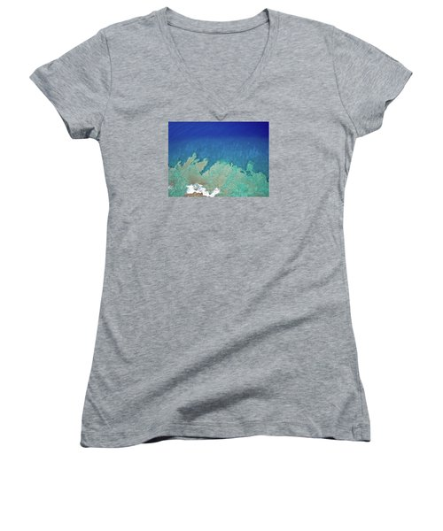Abstract Aerial Reef Women's V-Neck