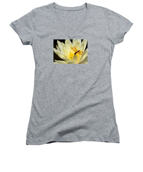 Amber Dragonfly Dancer 2 Women's V-Neck T-Shirt