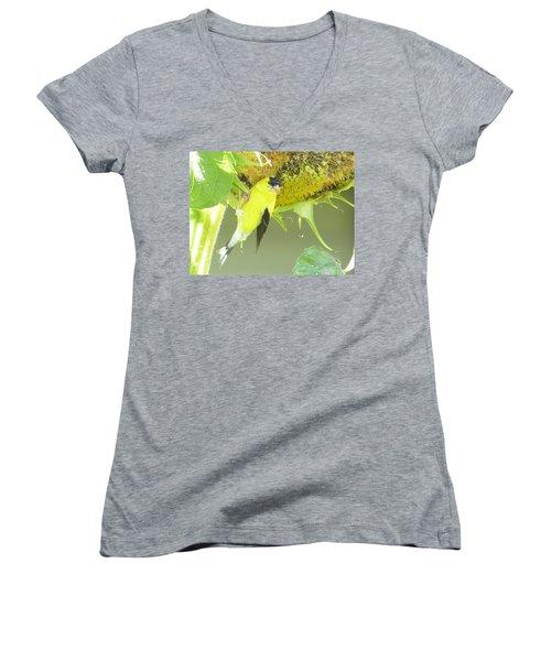 American Goldfinch On Sunflower Women's V-Neck T-Shirt