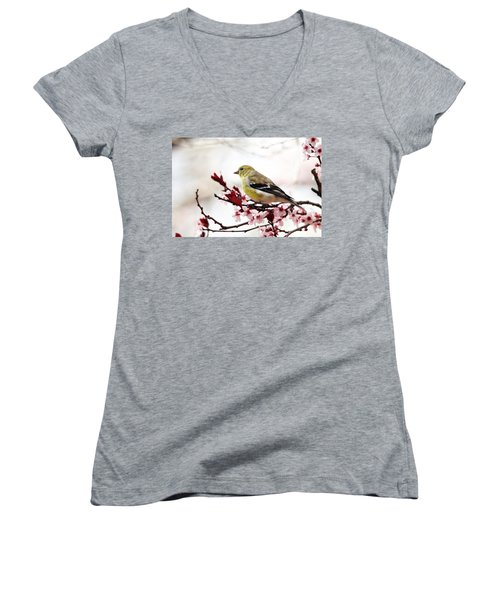American Goldfinch In Spring Women's V-Neck T-Shirt (Junior Cut) by Trina Ansel