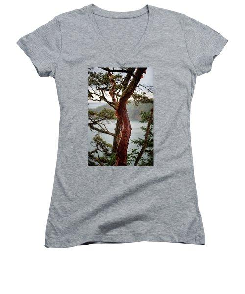 Arbutus Tree Women's V-Neck (Athletic Fit)
