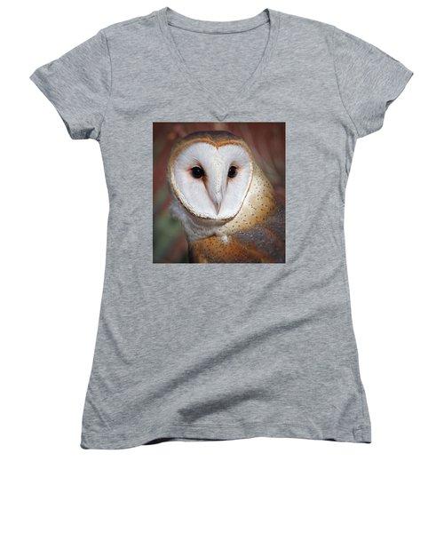 Barn Owl Women's V-Neck T-Shirt (Junior Cut) by Elaine Malott