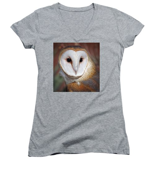 Barn Owl Women's V-Neck