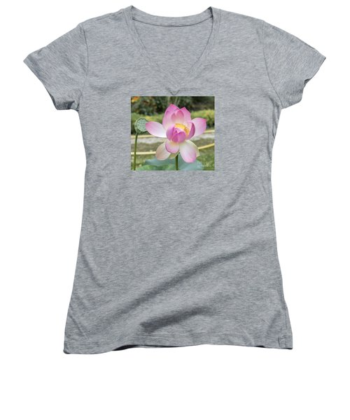 Beautiful Indian Lotus Women's V-Neck T-Shirt (Junior Cut) by Odon Czintos