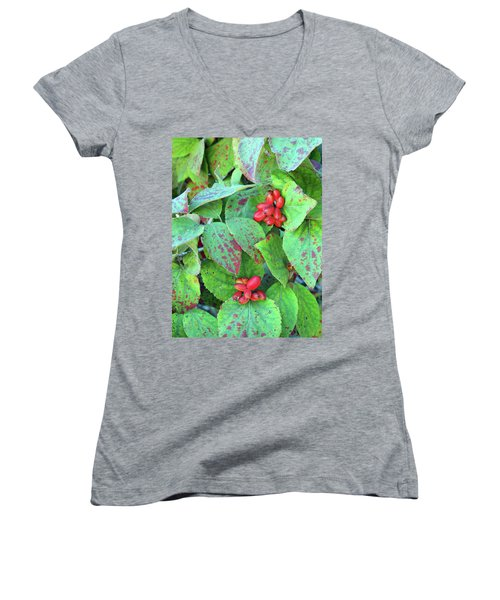 Berries Women's V-Neck (Athletic Fit)