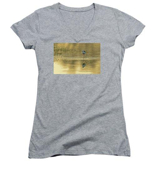 Black-winged Stilt Women's V-Neck T-Shirt