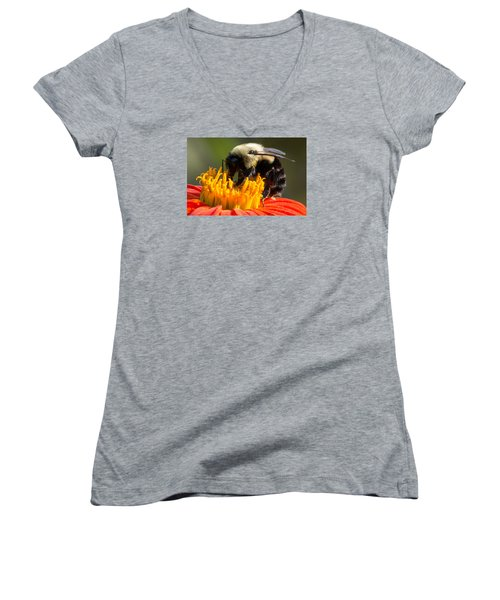 Bumble Bee Women's V-Neck (Athletic Fit)
