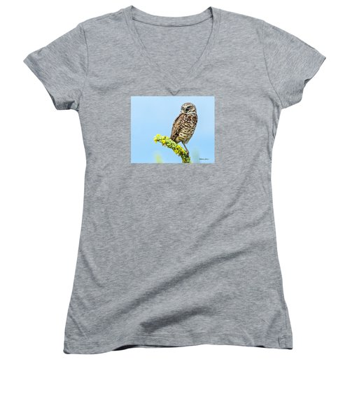 Burrowing Owl On Mullein Plant Women's V-Neck T-Shirt (Junior Cut) by Stephen  Johnson