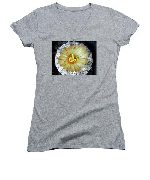 Cactus Flower 2 Women's V-Neck T-Shirt (Junior Cut) by Selena Boron