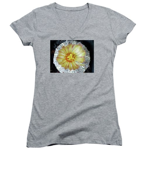 Cactus Flower 2 Women's V-Neck (Athletic Fit)