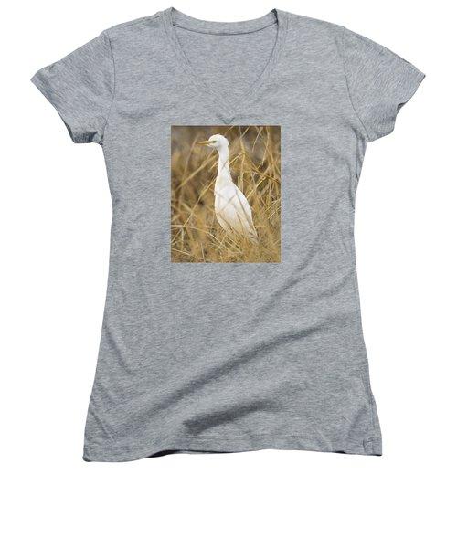 Cattle Egret Women's V-Neck T-Shirt (Junior Cut) by Doug Herr