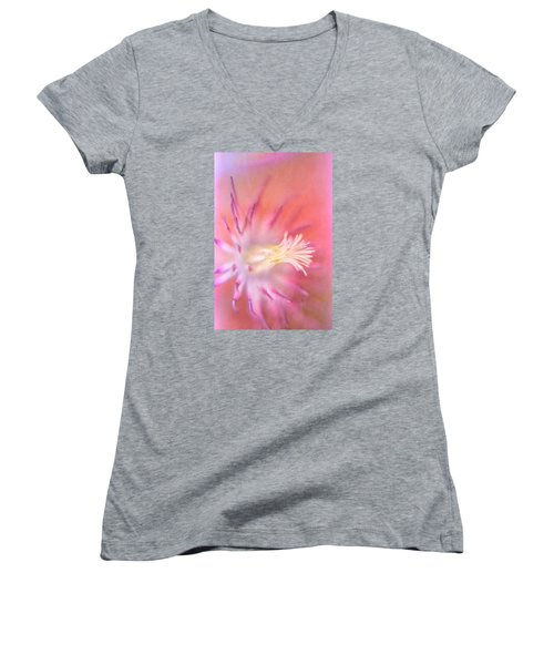 Clematis Women's V-Neck T-Shirt (Junior Cut) by Bonnie Bruno