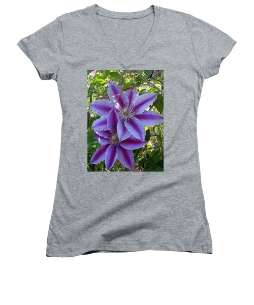 Clematis Petals Women's V-Neck T-Shirt