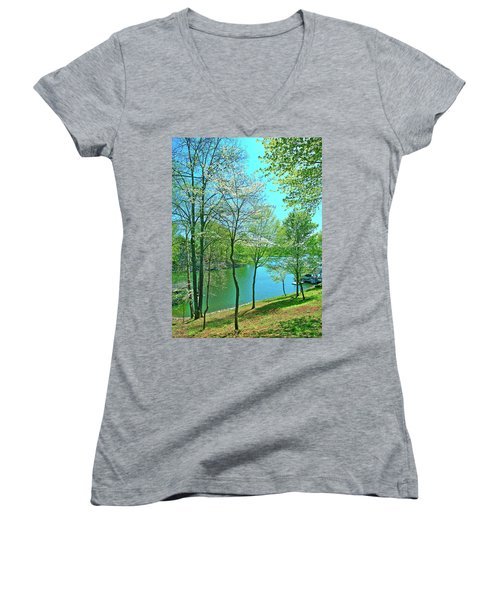 Cluster Of Dowood Trees Women's V-Neck