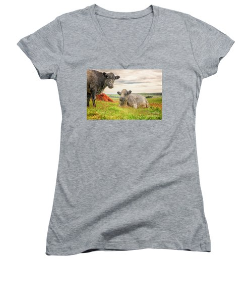 Colorful Highland Cattle Women's V-Neck T-Shirt (Junior Cut) by Patricia Hofmeester