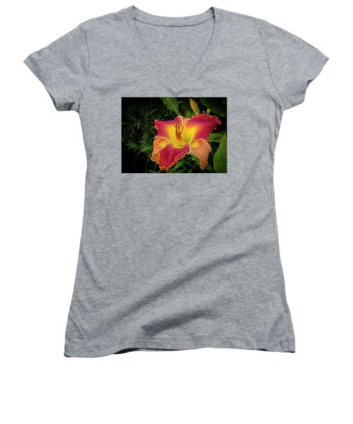 Colorful Lily  Women's V-Neck