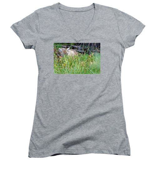 Coyote Women's V-Neck (Athletic Fit)