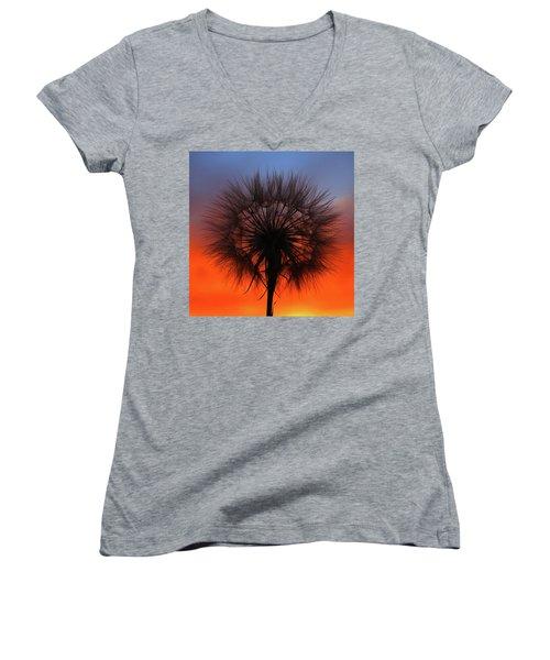 Dandelion Women's V-Neck T-Shirt (Junior Cut) by Paul Marto