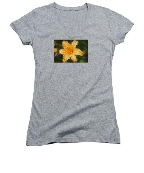 Daylily Hemerocallis Stella De Oro  Women's V-Neck T-Shirt (Junior Cut) by Rich Franco