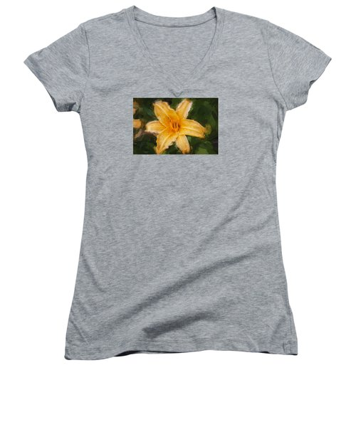 Daylily Hemerocallis Stella De Oro  Women's V-Neck T-Shirt