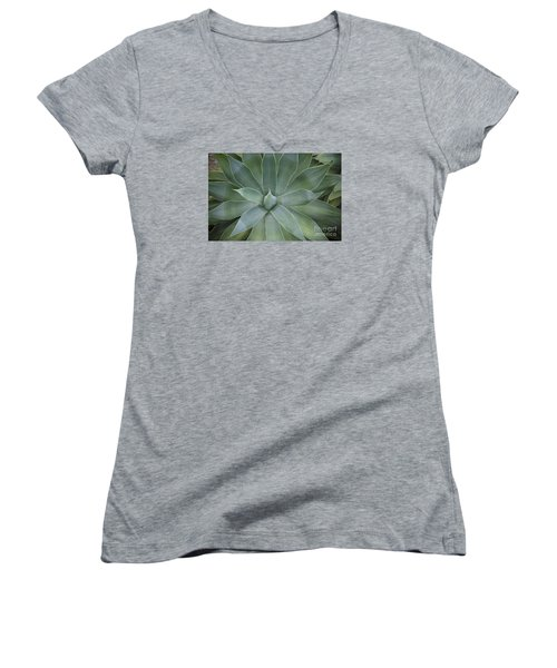 Detail Of An Agave Attenuata Women's V-Neck T-Shirt