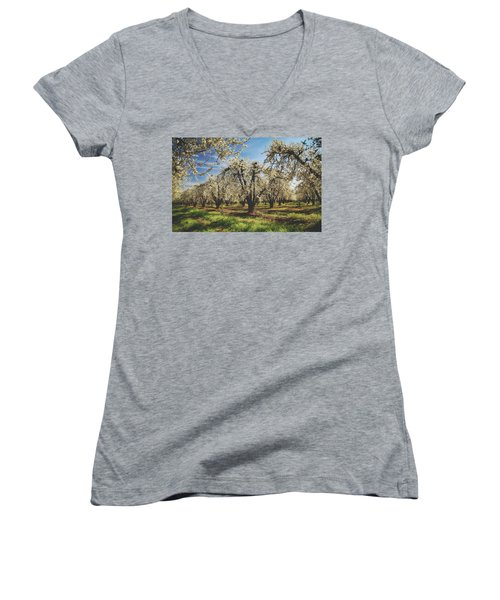 Women's V-Neck T-Shirt (Junior Cut) featuring the photograph Everything Is New Again by Laurie Search