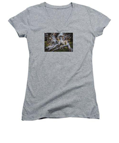 Fallen From Grace Women's V-Neck T-Shirt (Junior Cut) by Mark Lucey