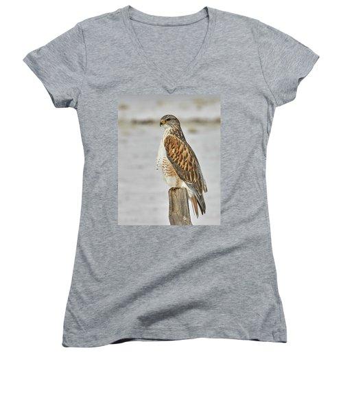 Ferruginous Hawk Women's V-Neck T-Shirt (Junior Cut)