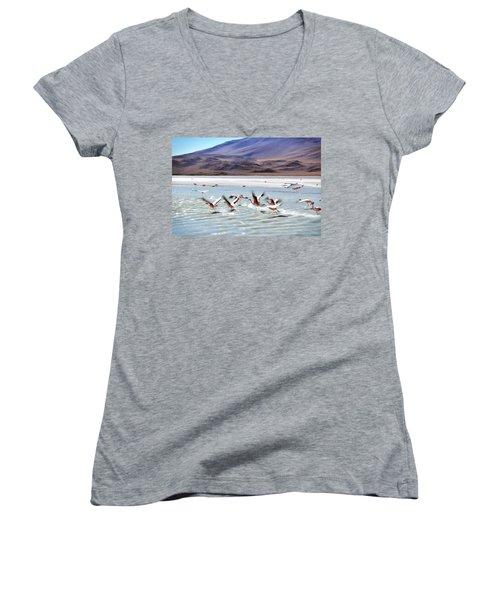 Flying Flamingos Women's V-Neck T-Shirt (Junior Cut) by Sandy Taylor