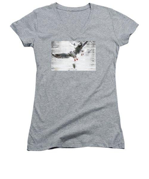 Flying Seagulls Women's V-Neck