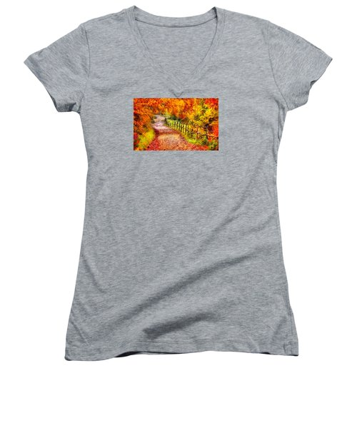Fall Foliage Path 2 Women's V-Neck (Athletic Fit)